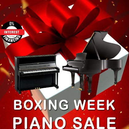 /news/2020/Boxing-week-sale-